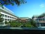 青岛:一批新学校亮点真不少