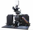 法国Phaseview公司Alpha3 3D光片显微成像系统