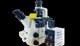 山西研究级倒置荧光显微镜 MF53-N