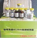 可溶性细胞表面分化抗原 40 配体 (sCD 40L)ELISA试剂盒