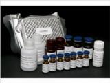 配对框基因6(PAX6)检测试剂盒(酶联免疫吸附试验法)