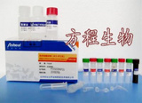 豚鼠组胺(HIS)ELISA试剂盒|检测价格 进口