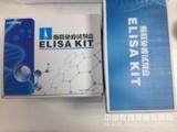 猪转化生长因子β1(TGF-β1)ELISA试剂盒