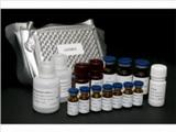 人胞浆型磷脂酶A2(cPLA2)ELISA试剂盒   规格