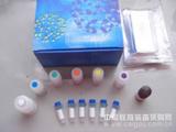 小鼠中性粒细胞弹性蛋白酶(NE)ELISA试剂盒
