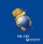 NB小学科学