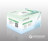 生物素连接酶BirA报价,生产厂家 同科生物品牌