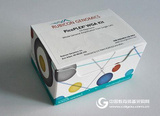 Rubicon RB3050/R30050 PicoPLEX WGA 单细胞全基因组扩增试剂盒