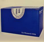 高纯质粒小量/中量/大量提取试剂盒