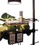 PH1LP教學實驗光合作用儀