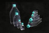 一次性细胞培养瓶,25ML,灭菌,普通型,滤膜盖