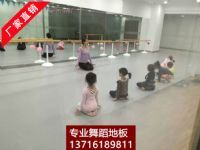 舞蹈房专用地胶 舞蹈房塑胶地板