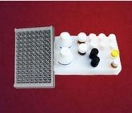 小鼠凝血因子IX(FIX)ELISA试剂盒