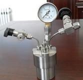 简易不锈钢高压反应釜