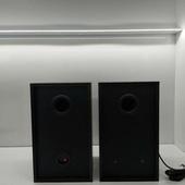 越普  扩音设备  RU358B教学对箱 教室音响 带话筒接口有源音响