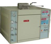GC9800RFP-2型熱(裂)解氣相色譜儀