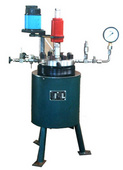 GSH-2L高压反应釜