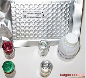 人多肽YY(Peptide-YY)ELISA试剂盒