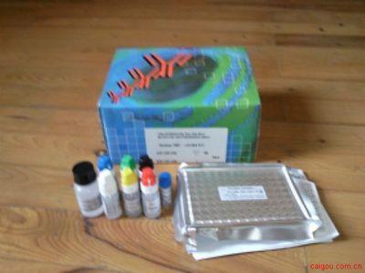 人可溶性白细胞分化抗原86Elisa试剂盒,B7-2/sCD86试剂盒