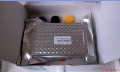 人基质细胞衍生因子1a(SDF-1a/CXCL12)ELISA Kit