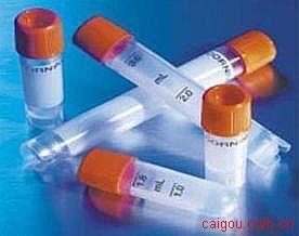 联会蛋白(GMNN)单抗