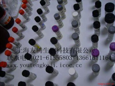 小鼠VI型胶原(mouse Collagen Type VI)ELISA试剂盒