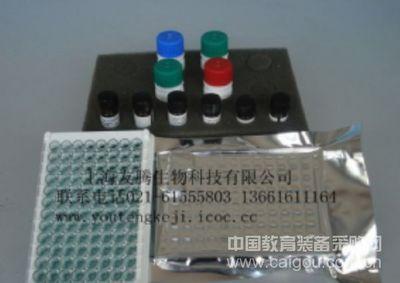 人单纯疱疹病毒抗原-1(HSV-Ag1)ELISA Kit