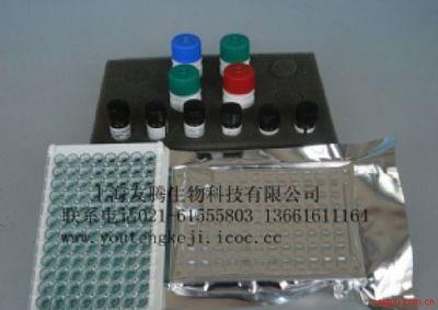 人单核细胞趋化蛋白-1(MCP-1)ELISA试剂盒