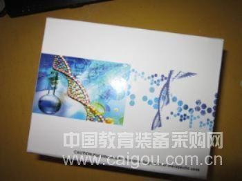 小鼠血管内皮细胞生长因子受体-3(VEGFR-3)ELISA试剂盒