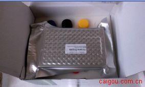 山羊白介素10(IL-10)ELISA Kit