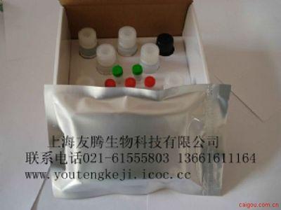 大鼠前列腺素E1(PGE1)ELISA Kit