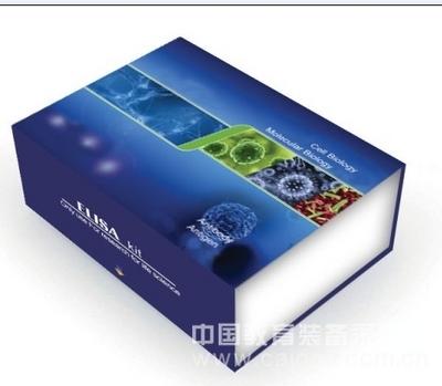 犬狂犬病毒抗原(PRV-Ag)ELISA试剂盒
