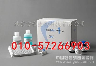 人脱氢表雄酮硫 酸酯ELISA试剂盒代测/DHEA-S  ELISA Kit说明书