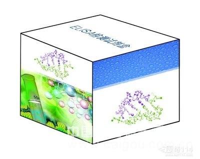 人巨细胞病毒抗体(CMV IgA)ELISA试剂盒