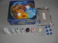 人白三烯D4(LTD4)ELISA试剂盒