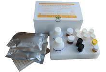 人二级淋巴组织趋化因子酶免检测试剂盒,人SLC/CCL21 ELISA试剂盒代测