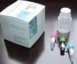 大鼠活化蛋白C(APC)ELISA试剂盒