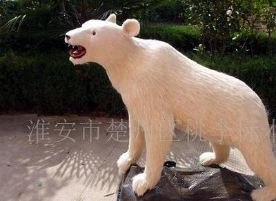 北极熊标本