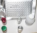 蓖麻凝集素(RCA)ELISA试剂盒
