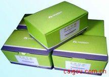 One step RT-PCR kit 一步法反转录PCR试剂盒