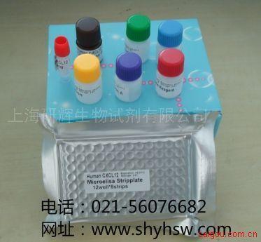 小鼠血管紧张素I(Ang I) ELISA Kit