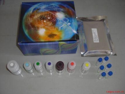 人RF检测Elisa试剂盒