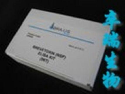 人血管内皮细胞生长因子D(VEGF-D)Elisa试剂盒