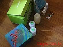 人Elisa-基质金属蛋白酶8/中性粒细胞胶原酶试剂盒,(MMP-8)试剂盒