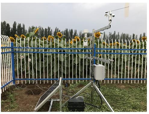 便携式土壤呼吸和植物生理生态定点观测系统在内蒙农牧科学院验收通过