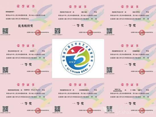 陕西高校参加全国第六届大学生艺术展演活动现场展演