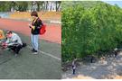 EcoDrone无人机遥感系统成功应用于东北地区林业研究