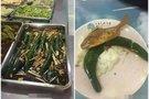 高校饭堂现奇葩菜 整条黄瓜炒大葱