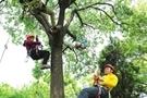 攀树运动在苏悄然兴起 未来将在校开课
