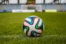 体育培训雄起 上市公司和区域教育巨头跨界